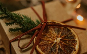 Picture holiday, box, gift, orange, branch, slice, Christmas, New year, garland, bow, needles