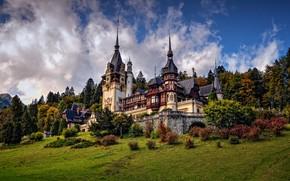 Picture trees, castle, architecture, the bushes, Romania, Romania, Sinai, Peles Castle, Peles Castle, Sinaia