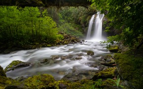 Picture forest, river, waterfall, Washington, Washington State, North Cascades National Park, National Park North Cascade