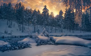 Picture winter, forest, snow, trees, river, Norway, the snow, Norway, RINGERIKE, Ringerike