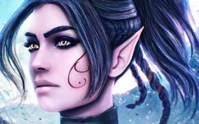 Picture girl, face, elf, beauty, ears, art, Sebille, Divinity Original Sin 2