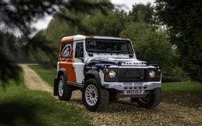 Picture greens, Land Rover, Defender, 2013, 2014, Challenge, Bowler