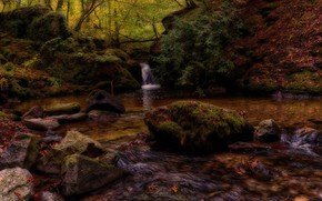 Picture autumn, forest, leaves, the dark background, stones, shore, for, waterfall, the bushes, pond, boulders, stones
