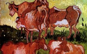 Picture cows, Vincent van Gogh, Auvers-sur-Oise, Cows after Jordaens