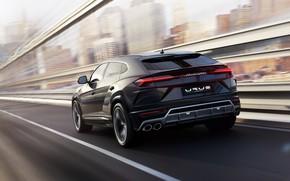Picture speed, Lamborghini, 2018, Urus