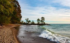 Picture Lake Ontario, surf, Toronto beach, trees, shore, beach, sand, Toronto, lake, clouds, the sky, horizon, …
