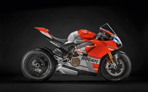 Picture motorcycle, bike, Ducati, Panigale, Corse, 2019, V4 S