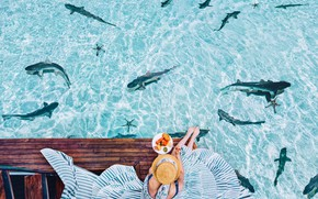 Picture water, girl, mood, the ocean, the situation, Breakfast, dress, hat, sharks, Kristina Makeeva