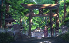 Picture girl, nature, temple, torii, NIK