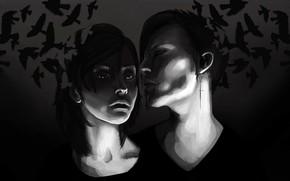 Picture birds, night, girls, dark, Cutt, Sci