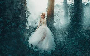 Picture forest, girl, trees, fog, dress, Princess, ivy