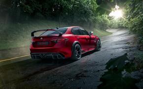 Picture Alfa Romeo, Giulia, GTAm, 2021