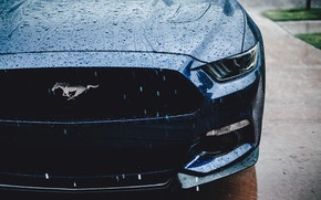 Picture Ford Mustang, muscle car, water drops