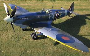 Picture Screw, Fighter, Gun, Spitfire, Supermarine Spitfire, RAF, The Second World War, Chassis