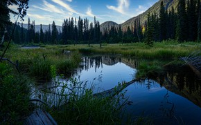 Picture forest, mountains, nature, reflection, shore, Canada, Albert, pond