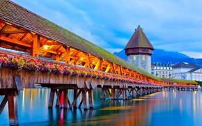 Picture flowers, bridge, the city, lake, mountain, home, the evening, Switzerland, lighting, Lucerne, Pilatus