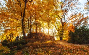 Picture autumn, the sun, rays, landscape, nature, Park, Krasnodar, Paul Sahaidak