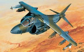 Picture Deck, Attack, US NAVY, AV-8B Harrier II, Jaroslaw Wrobel, usmc