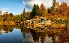 Picture autumn, forest, trees, landscape, nature, lake, beauty