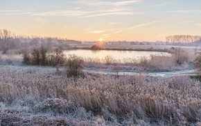 Picture winter, frost, road, the sky, grass, the sun, clouds, rays, snow, landscape, nature, lake, dawn, …
