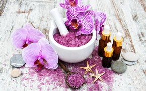 Picture flower, Orchid, Spa, salt, Olena Rudo