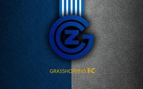 Picture wallpaper, sport, logo, football, Grasshoppers