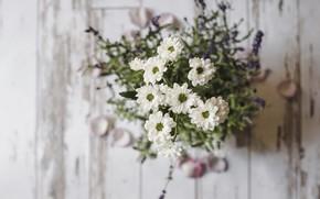 Picture flowers, bouquet, flower, wood, bouquet