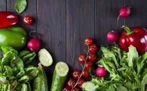 Picture cucumber, pepper, vegetables, tomato, radishes, Basil, arugula
