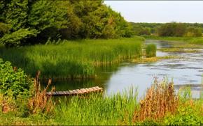 Picture Greens, River, The bridge