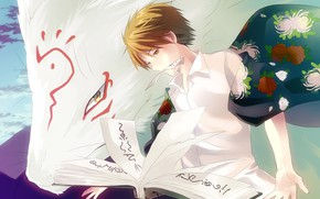 Picture cat, anime, art, guy, Natsume Yuujinchou, Book of friendship Natsume, The Sensei