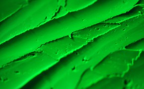 Picture substance, texture, green