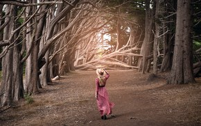 Picture road, girl, trees