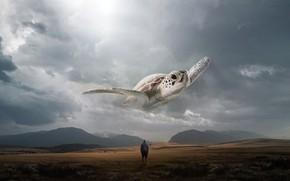 Picture People, Flight, Clouds, Turtle, Fantasy, Landscape, Art, Art, Fiction, Flies, Surreal, Parallel Reality, Everton Gali, …
