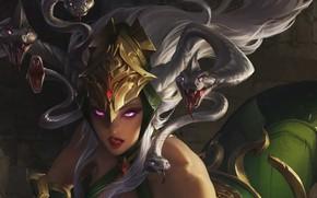Picture snakes, legend, mythology, burning look, medusa gorgon, горгона медуза