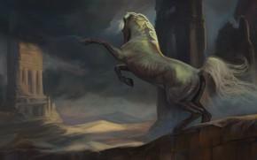 Picture horse, horse, fantasy