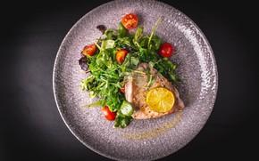 Picture lemon, food, salad, tuna, steak, tomatoes-cherry