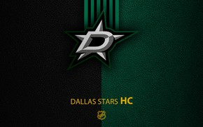 Picture wallpaper, sport, logo, NHL, hockey, Dallas Stars