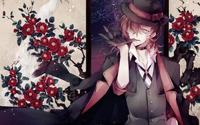 Picture anime, art, Bungou Stray Dogs, Stray dogs literary geniuses, Camellia
