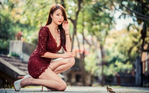 Picture hairstyle, Asian, beautiful girl, beautiful girl, asian, stylish, stylish, stiletto heels, fashion, hairstyle, fashionable, stiletto …