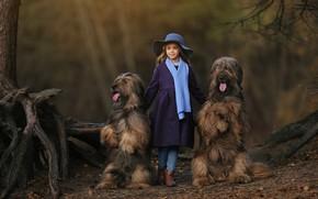 Picture dogs, hat, scarf, girl, Anastasia Barmina