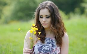 Picture hair, meadow, flowers, bokeh, Millie