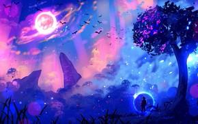 Picture lights, lights, tree, rocks, glow, other worlds, traveler, glow, rocks, tree, a flock of birds, …