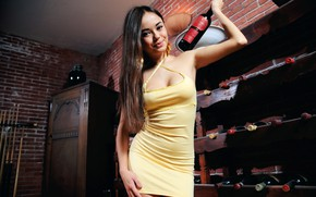 Picture sexy, pose, smile, wine, model, makeup, figure, dress, hairstyle, bottle, brown hair, beauty, is, cellar, …