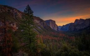 Picture CA, USA, Yosemite, Yosemite National Park