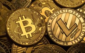 Picture logo, coins, coins, bitcoin, bitcoin, litecoin, litecoin
