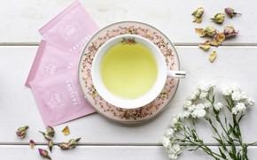 Picture flowers, petals, green tea