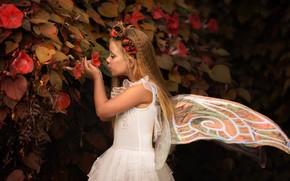 Picture leaves, flowers, wings, fairy, girl, wreath, Кузнецова Виктория