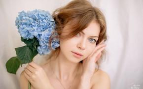Picture look, girl, flowers, face, photo, beautiful, gentle, hydrangea, Juliana Mizinova