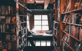 Picture pillow, books, comfort, window, library