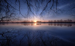 Picture water, the sun, trees, dawn
